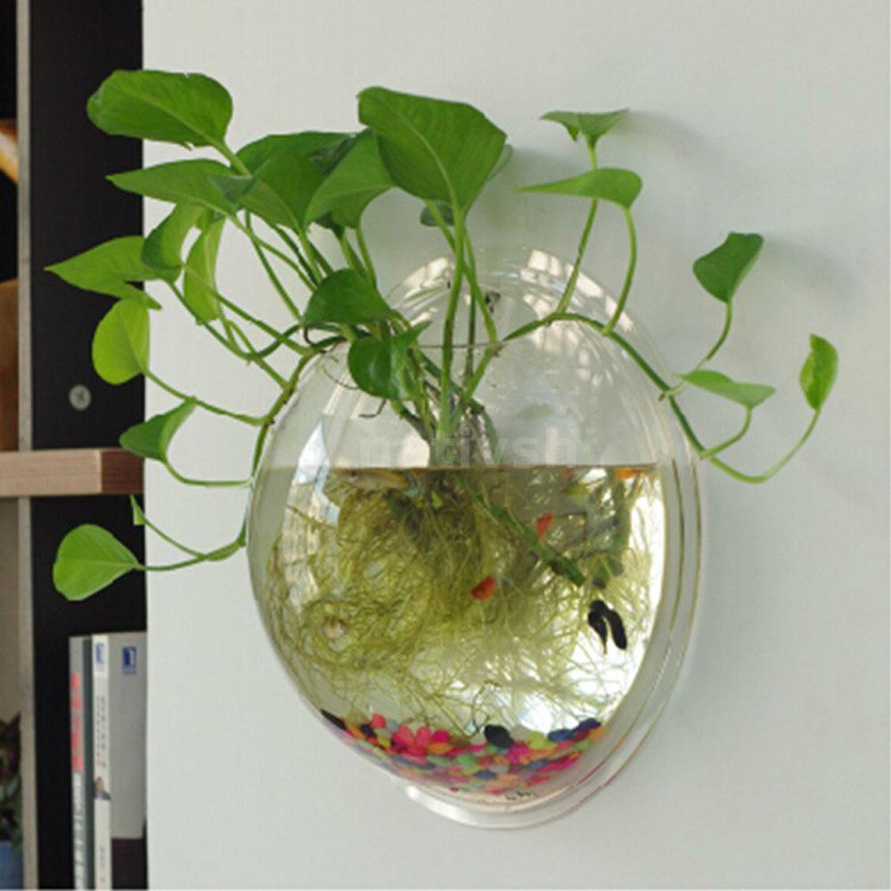 New Wall-mounted Hanging Acrylic Fish Tank Bubble Aquarium Bowl Plant ...